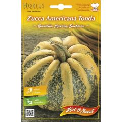 Semi Zucca Americana Tonda