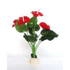 Anthurium Red 40cm