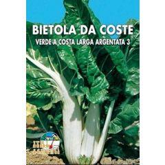 Semi di Bietola da Coste Verde a Costa Larga Argentata 3