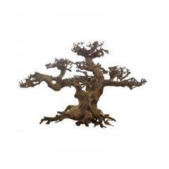 Ada Bonsai Wood 2