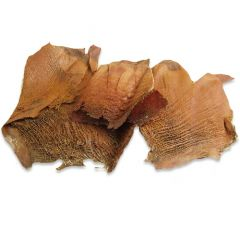 Corteccia di Palma naturale