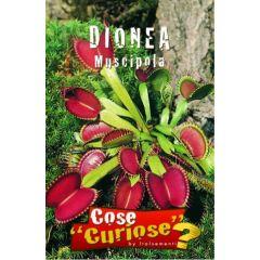 Semi Dionaea Muscipula