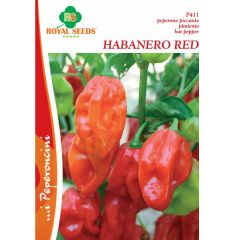 Semi Peperoncino Habanero Red