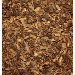 Hermetia Illucens essiccate 500ml
