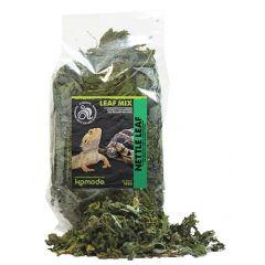 Komodo Nettle Leaf 100gr.