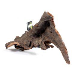 Legno Di Mangrovia 25-30cm