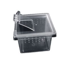 Mini Spider Box - 6x6x4.5h cm