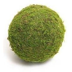 Dr.Raptor Natural Moss Ball
