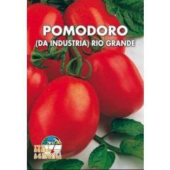 Semi di Pomodoro Petomech