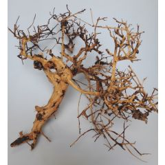 Scaping Twigs 20-50cm