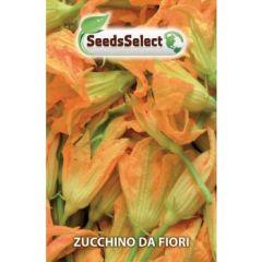"""Semi Zucchino Da Fiore """"san Pasquale"""""""