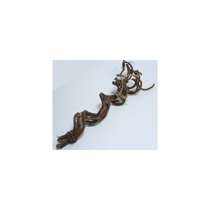 Dr.Raptor Spiral Liane - 8 Pezzi 50cm