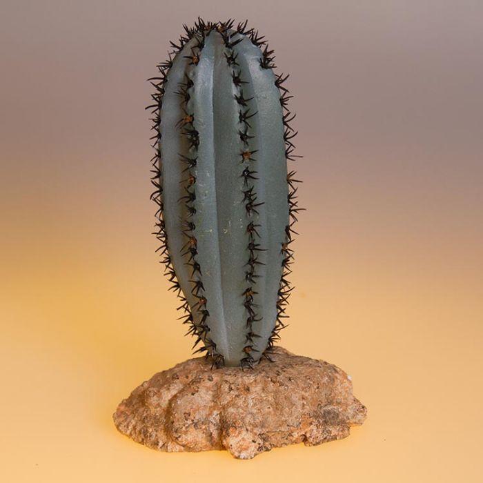 Eurozoo Saguro Cactus