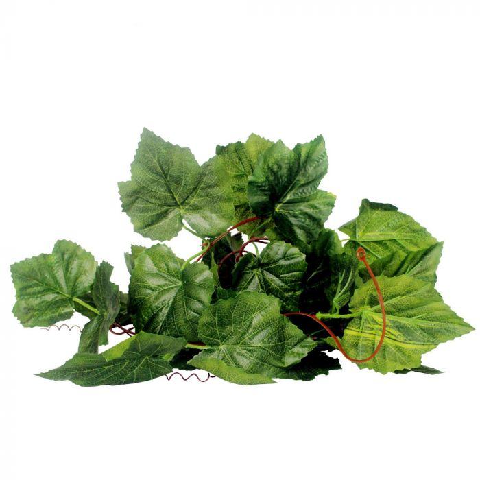 Dr.Raptor Grape Vine Leaf - 2 Metri