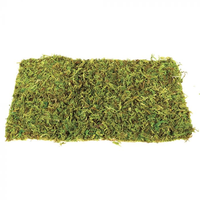 Komodo Natural Moss Small - Tappeti di muschio 2 pezzi