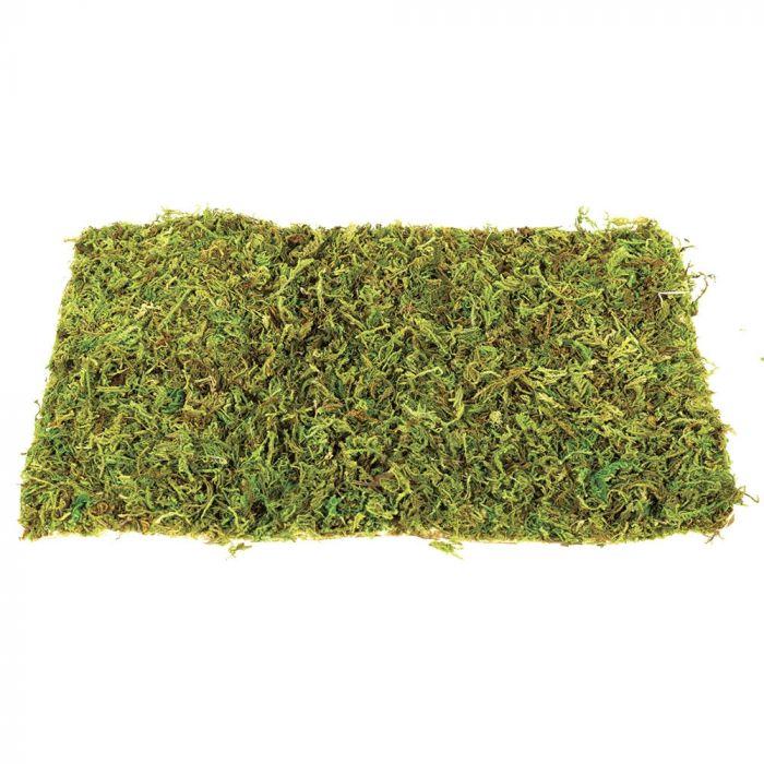 Komodo Natural Moss Large -  Tappeti di muschio 2 pezzi
