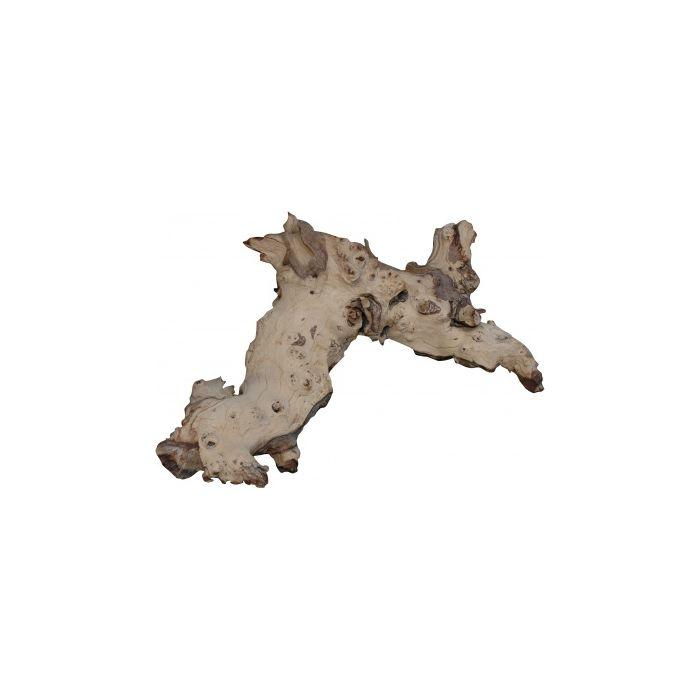 Lucky Reptile Mopani Wood 15-30cm