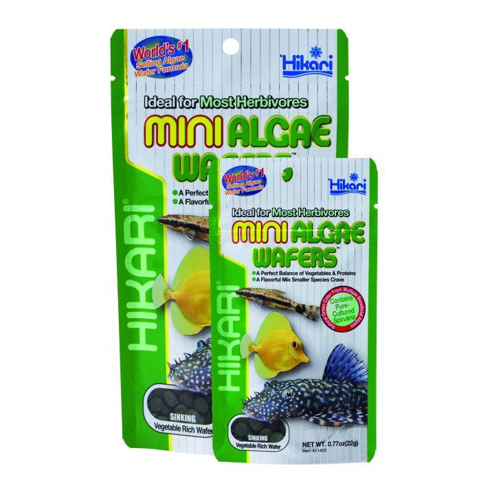 Hikari - Mini Algae Wafers - 22 gr - Mangime per pesci pulitori vegetariani piccoli - medi