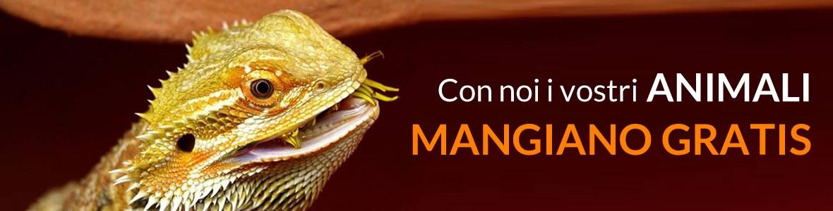 CON NOI I VOSTRI ANIMALI MANGIANO GRATIS !!