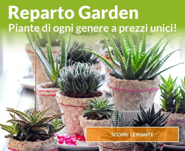 Reparto Garden