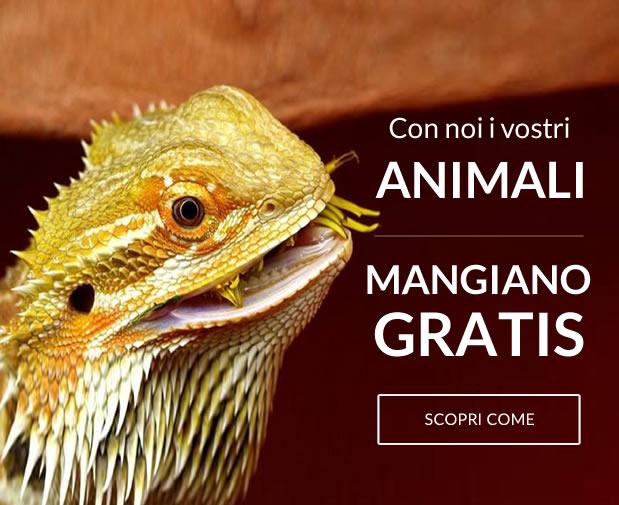 Con noi i vostri animali mangiano gratis